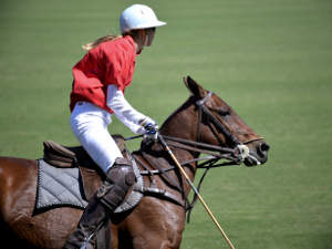 Polo in Buenos Aires - © prunkova
